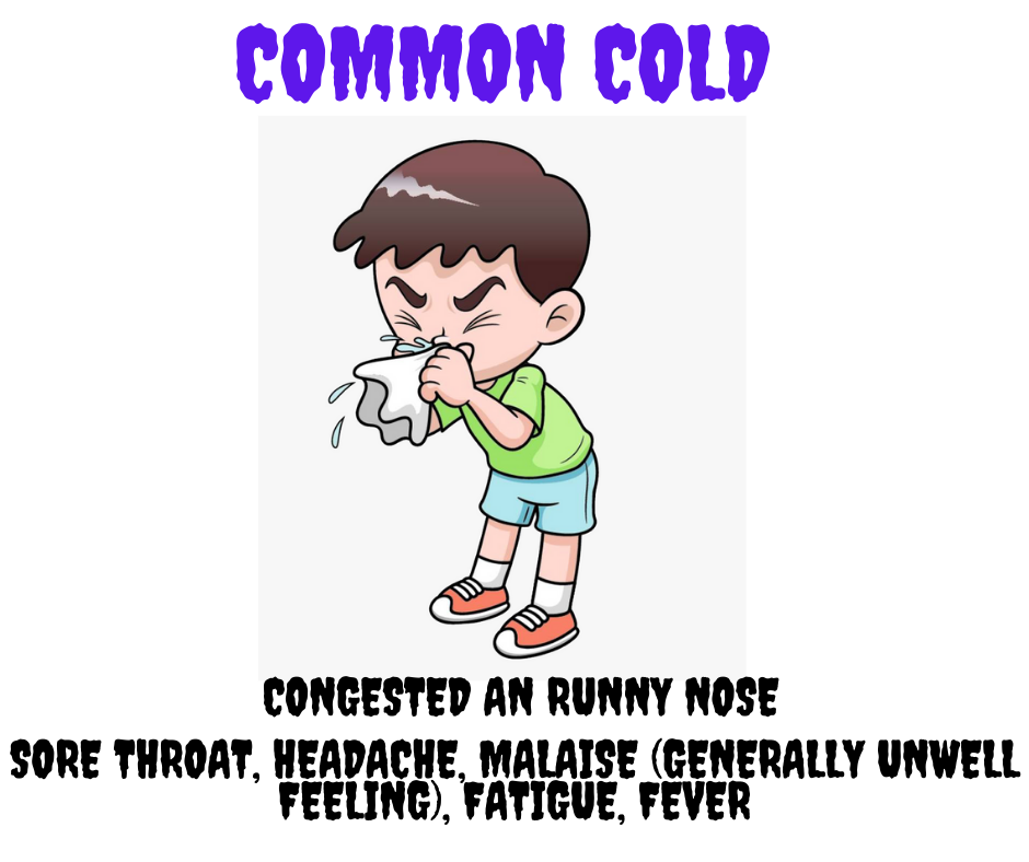 common cold symptoms and signs