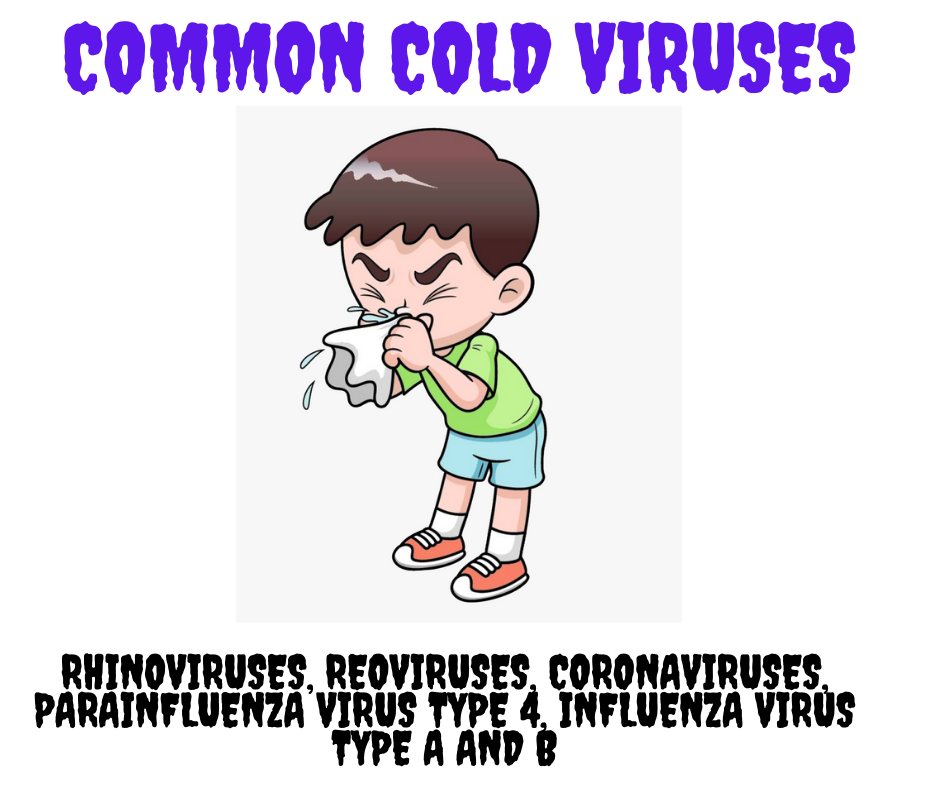 Common cold - causes